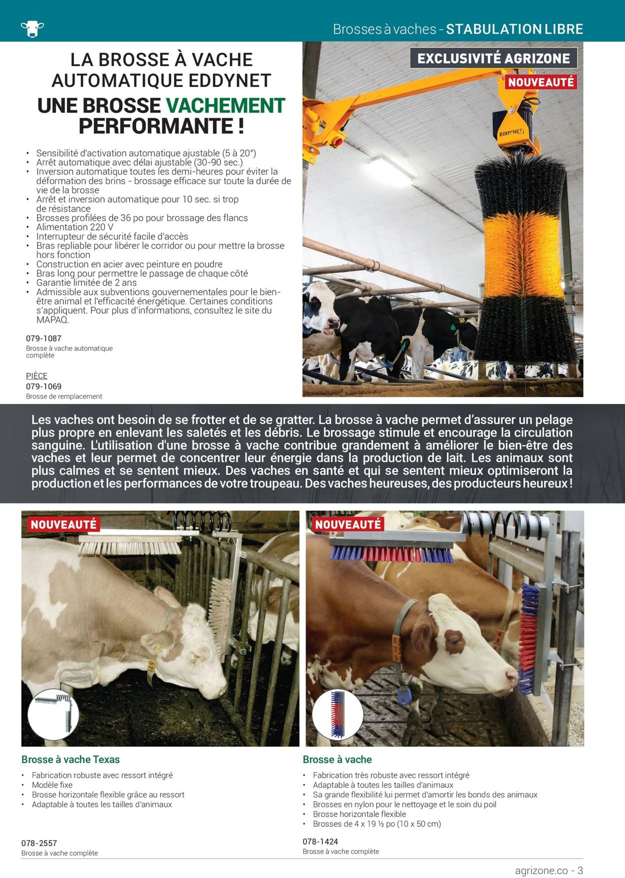 BMR Flyer - 01/11-12/31/2021 (Page 3)