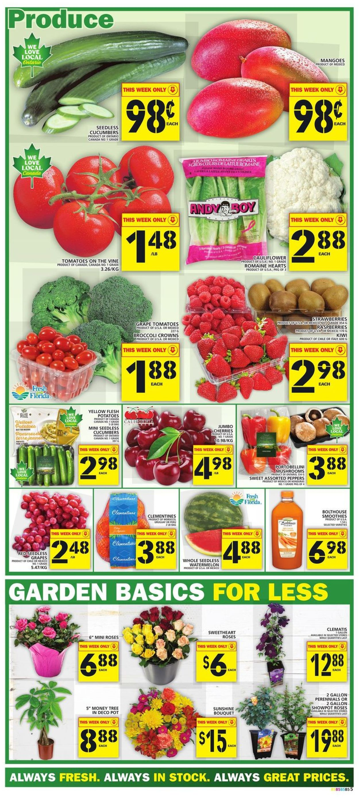Food Basics Flyer - 05/27-06/02/2021 (Page 5)