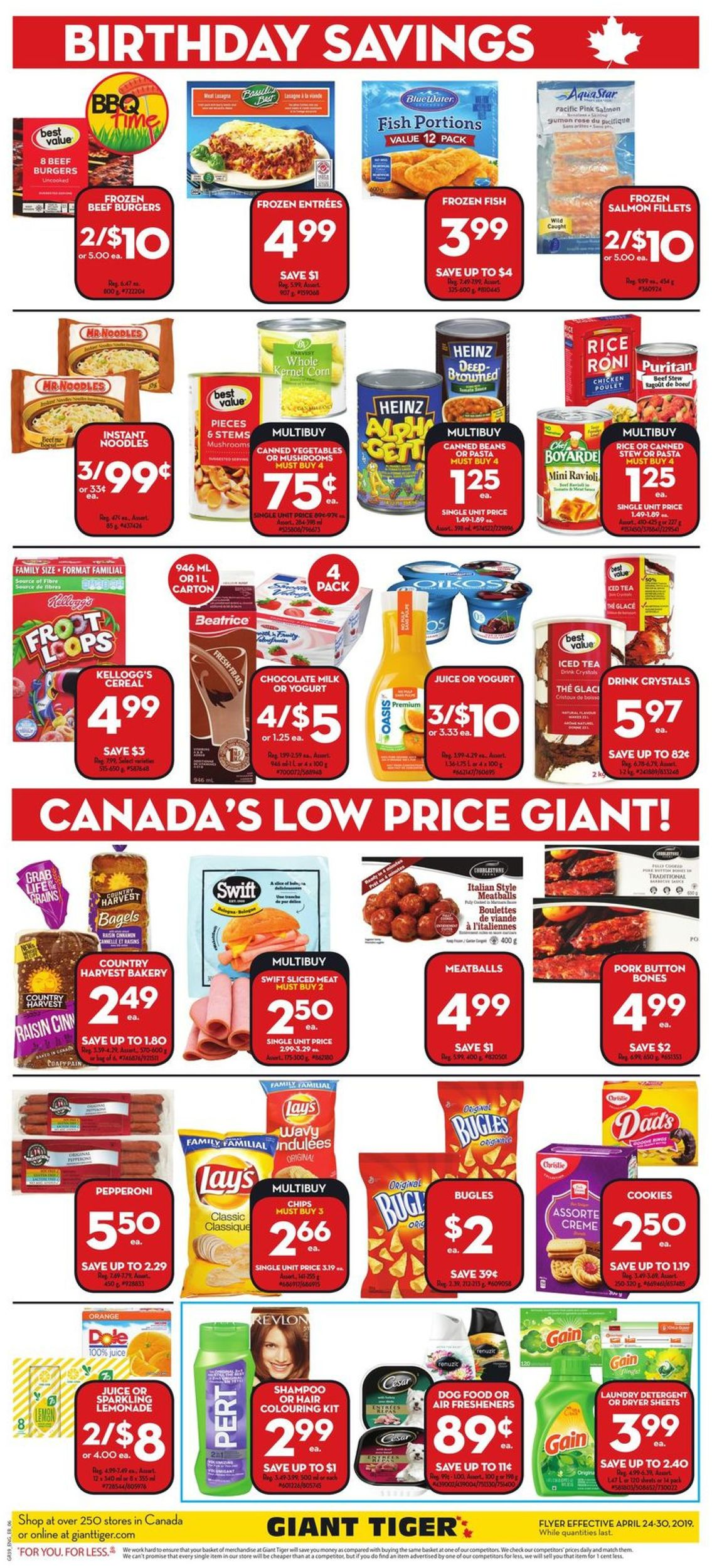 Giant Tiger Flyer - 04/24-04/30/2019 (Page 4)