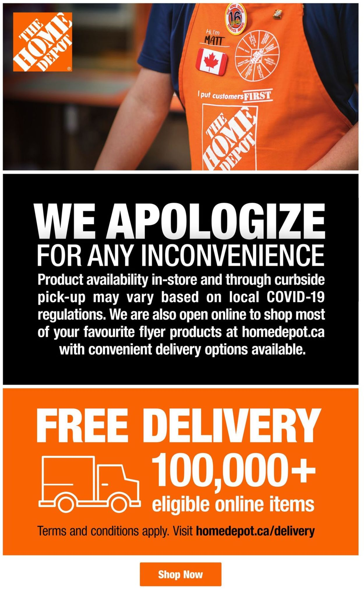 Home Depot Flyer - 01/05-01/18/2021 (Page 3)