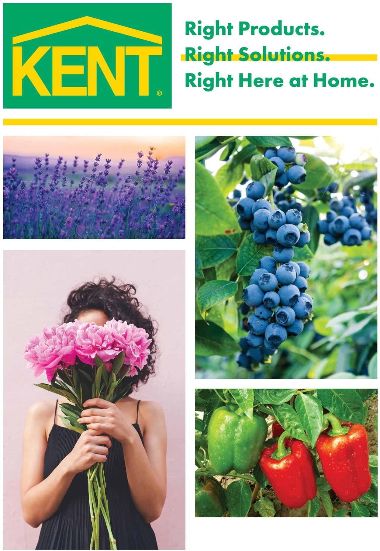 Kent Flyer - 05/14-06/15/2020