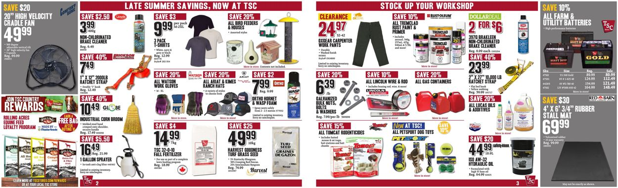 TSC Stores Flyer - 08/07-08/13/2020 (Page 2)