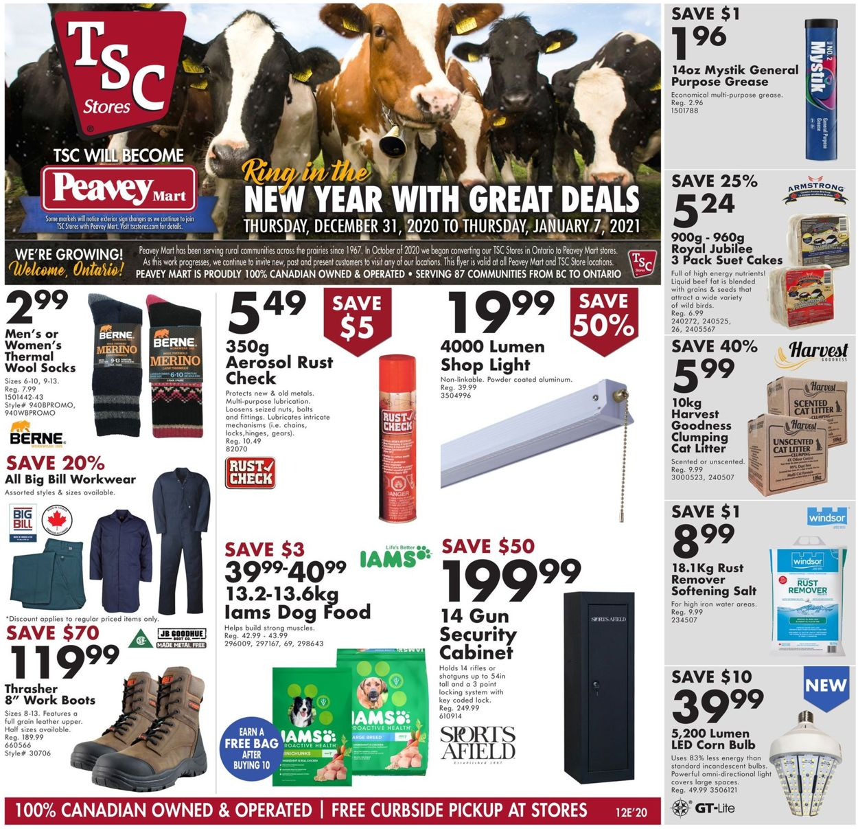 TSC Stores - New Year 2021 Flyer - 12/31-01/07/2021
