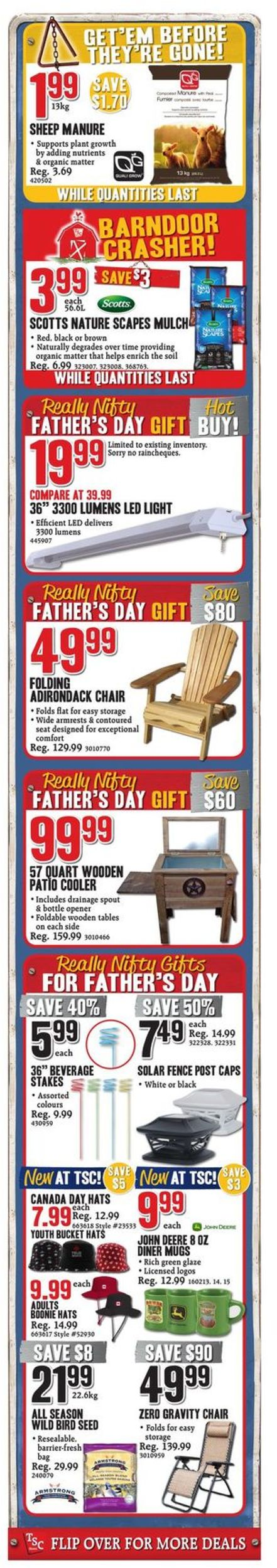 TSC Stores Flyer - 06/07-06/13/2019 (Page 2)
