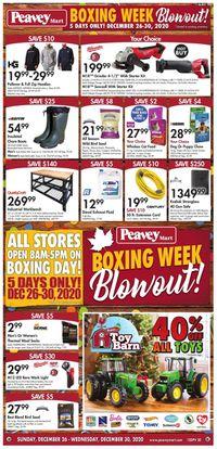 Peavey Mart Boxing Week Blowout