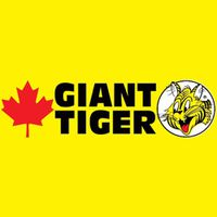 Giant Tiger flyer
