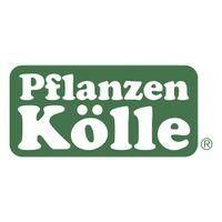 Werbeprospekte Pflanzen Kölle