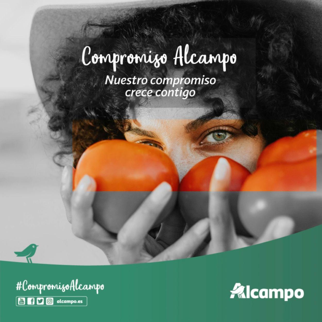 Alcampo Folleto - 24.05-27.08.2021
