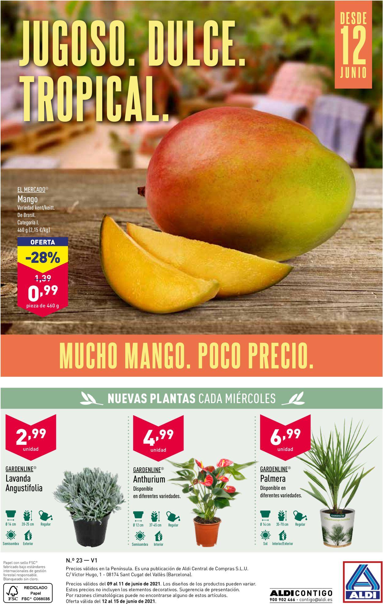 Aldi Folleto - 09.06-15.06.2021 (Página 28)