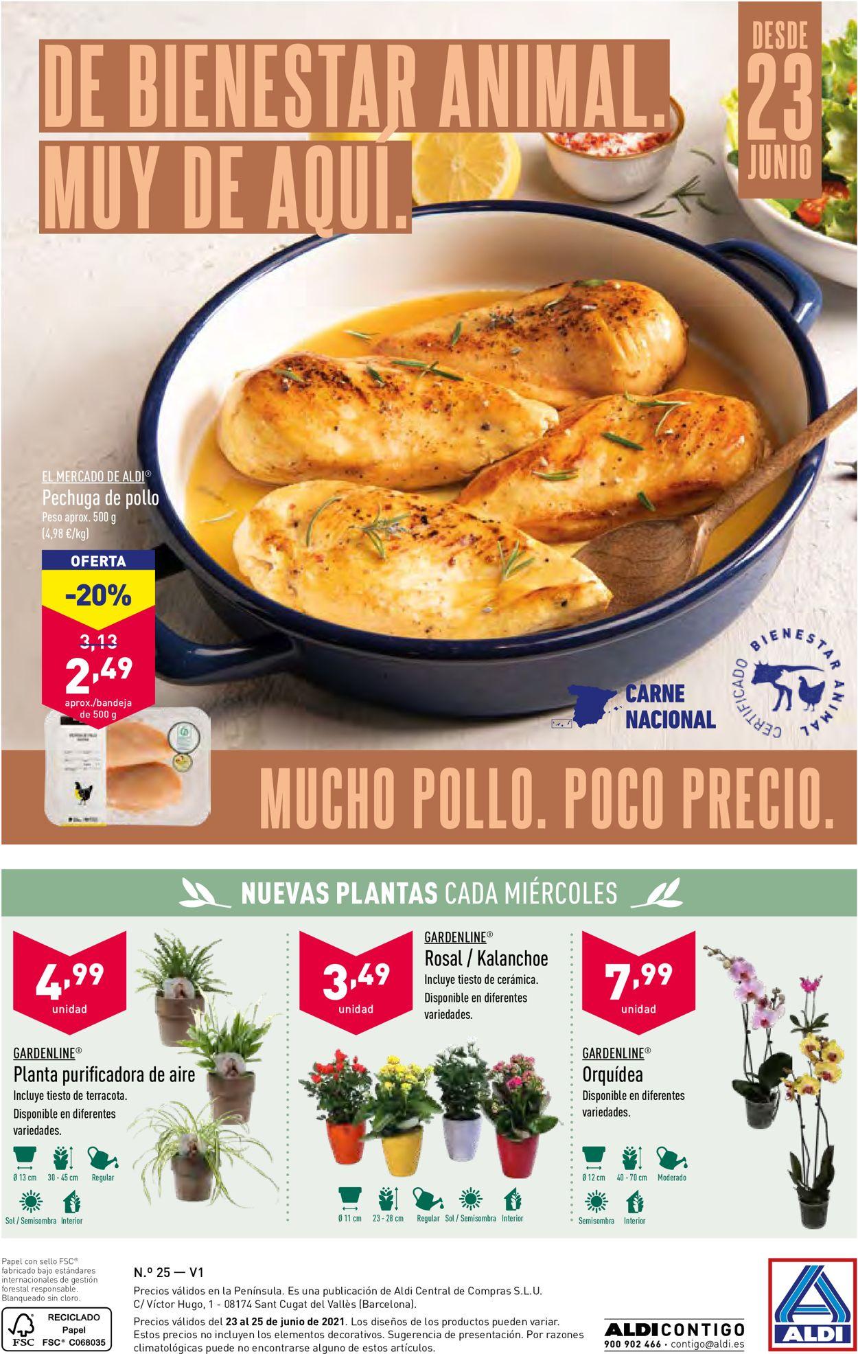 Aldi Folleto - 23.06-29.06.2021 (Página 28)