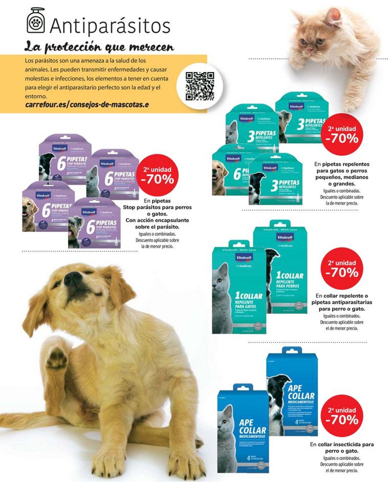 Carrefour Folleto - 06.07-22.07.2021 (Página 19)