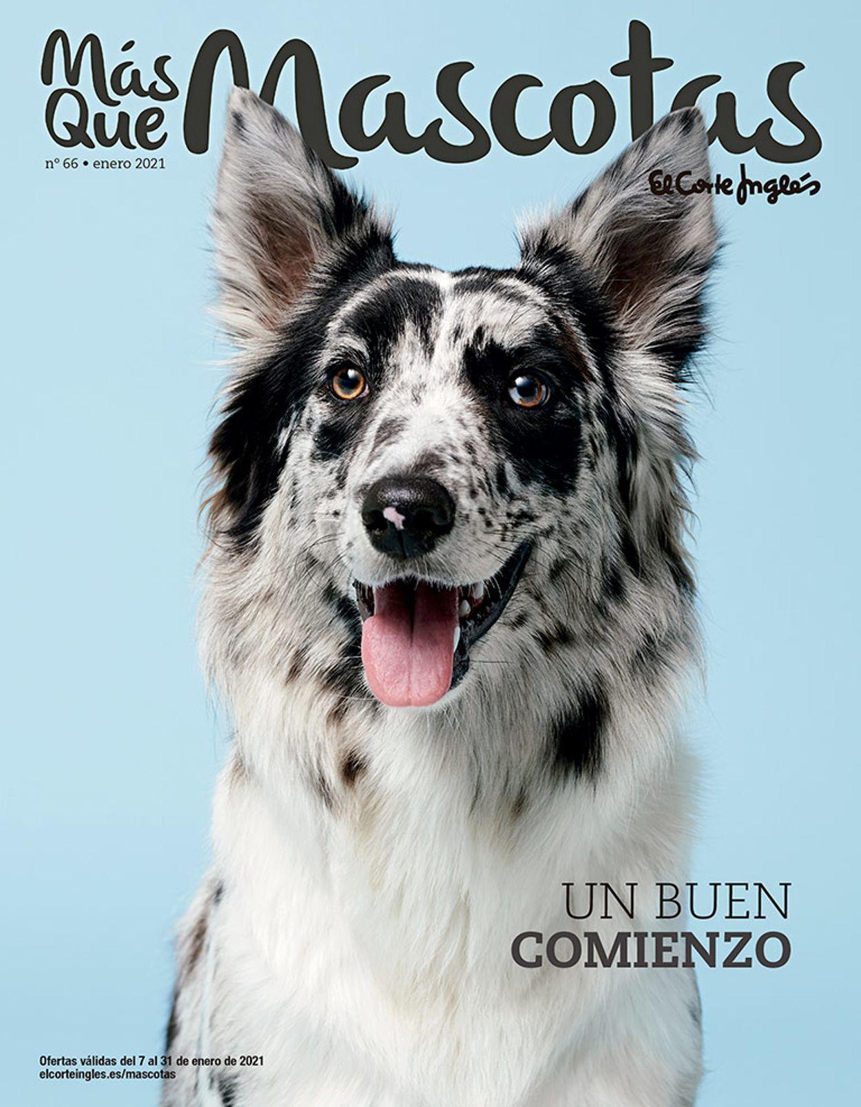 El Corte Inglés Mascotas 2021 Folleto - 07.01-31.01.2021