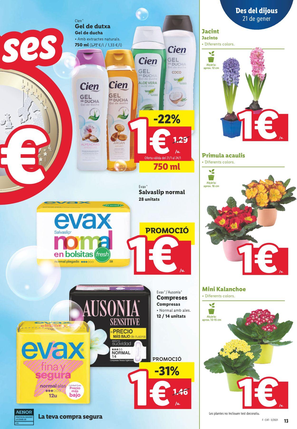 Lidl Ofertasses a 1€ Folleto - 21.01-27.01.2021 (Página 13)