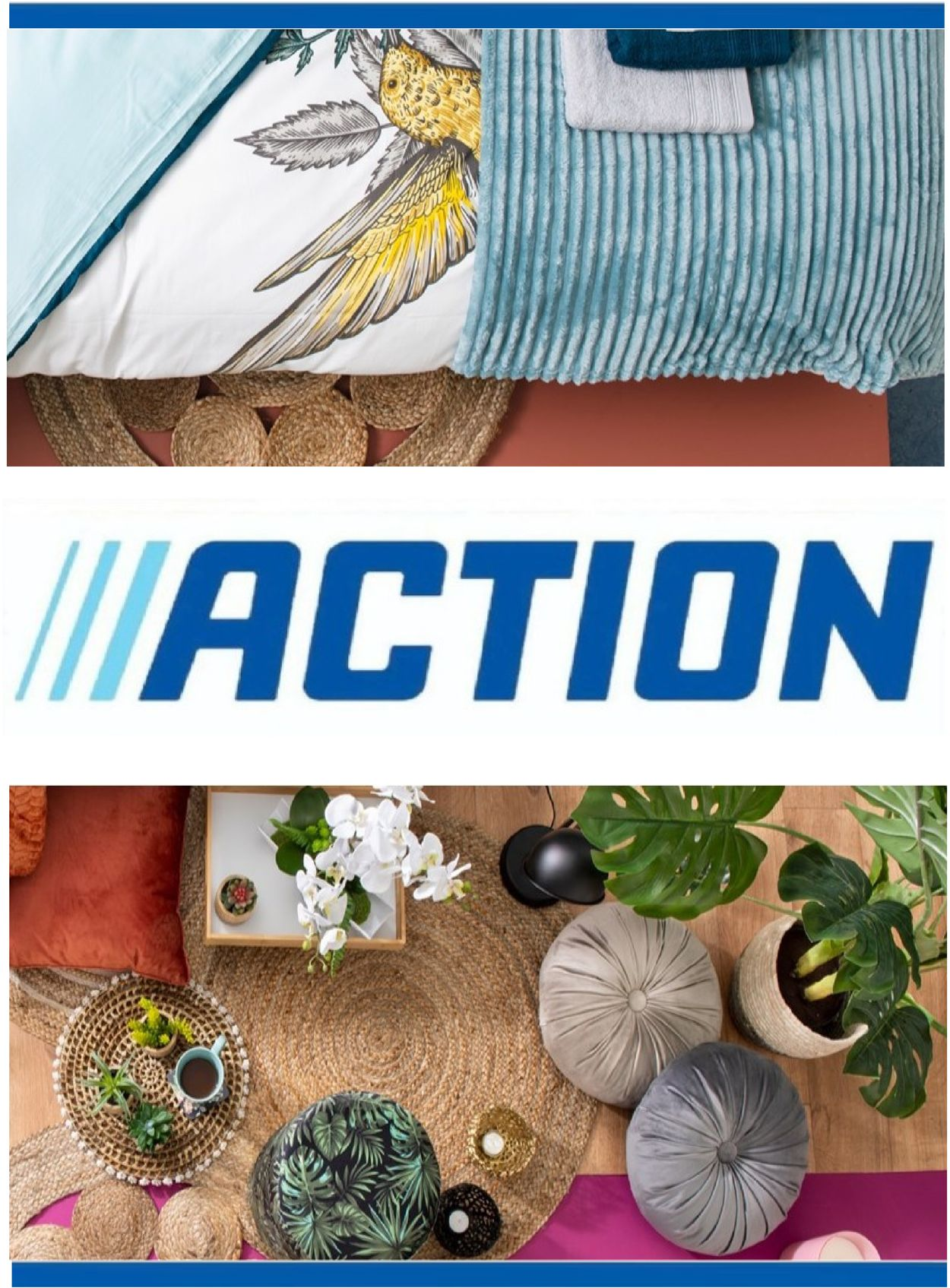 Action Catalogue - 27.01-02.02.2021