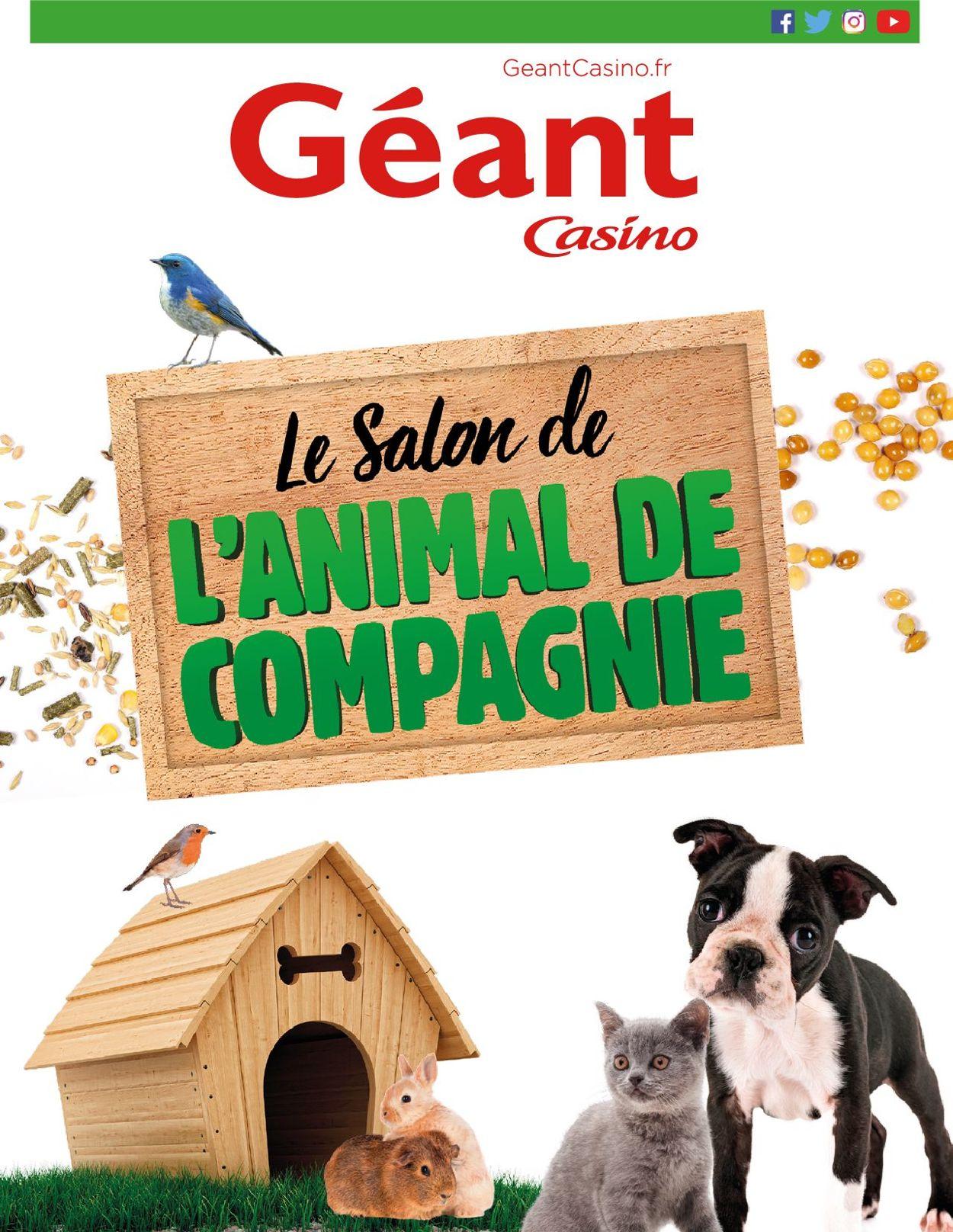 Géant Casino Catalogue - 11.06-23.06.2019
