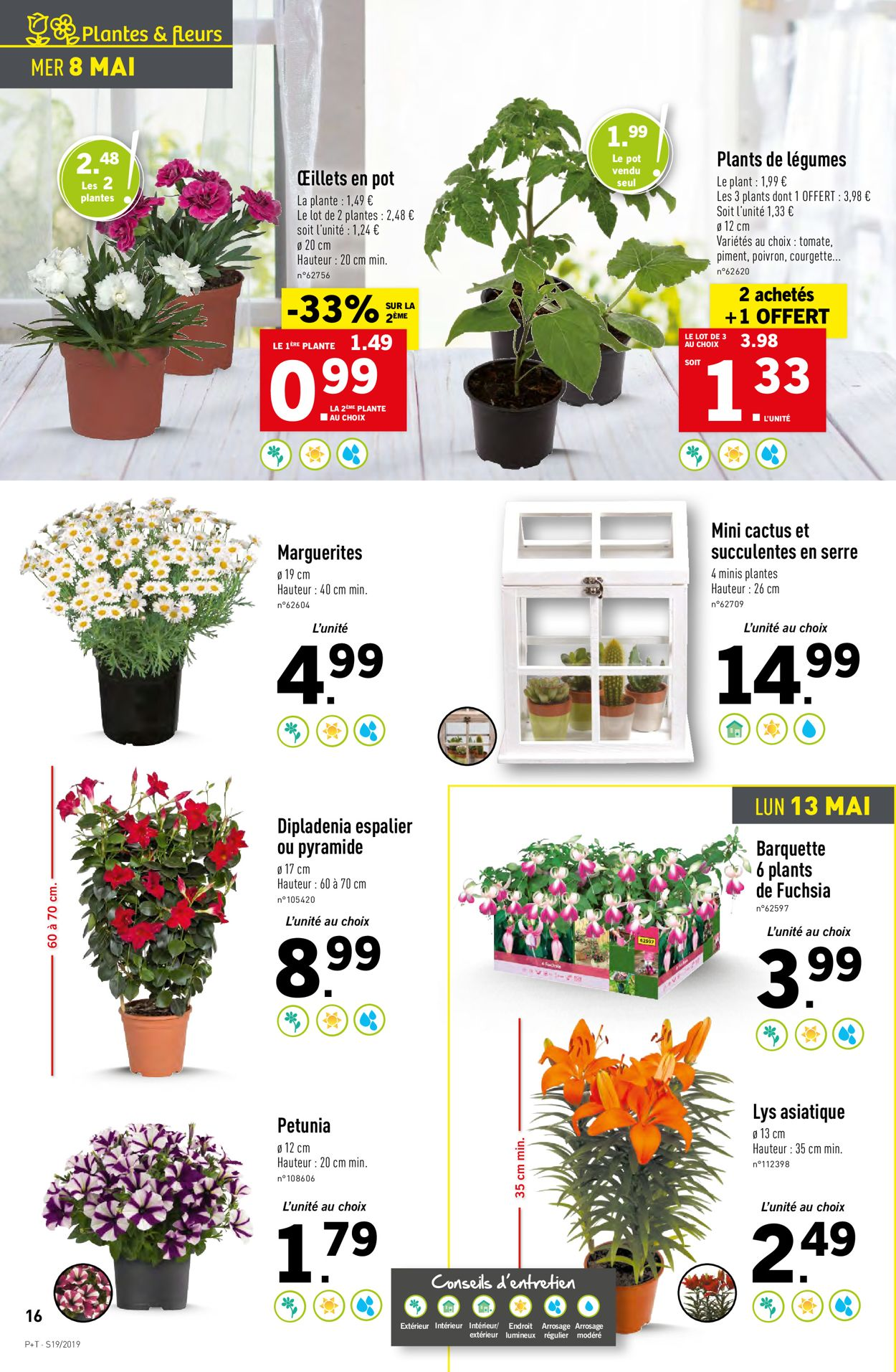 Lidl Catalogue - 08.05-14.05.2019 (Page 16)