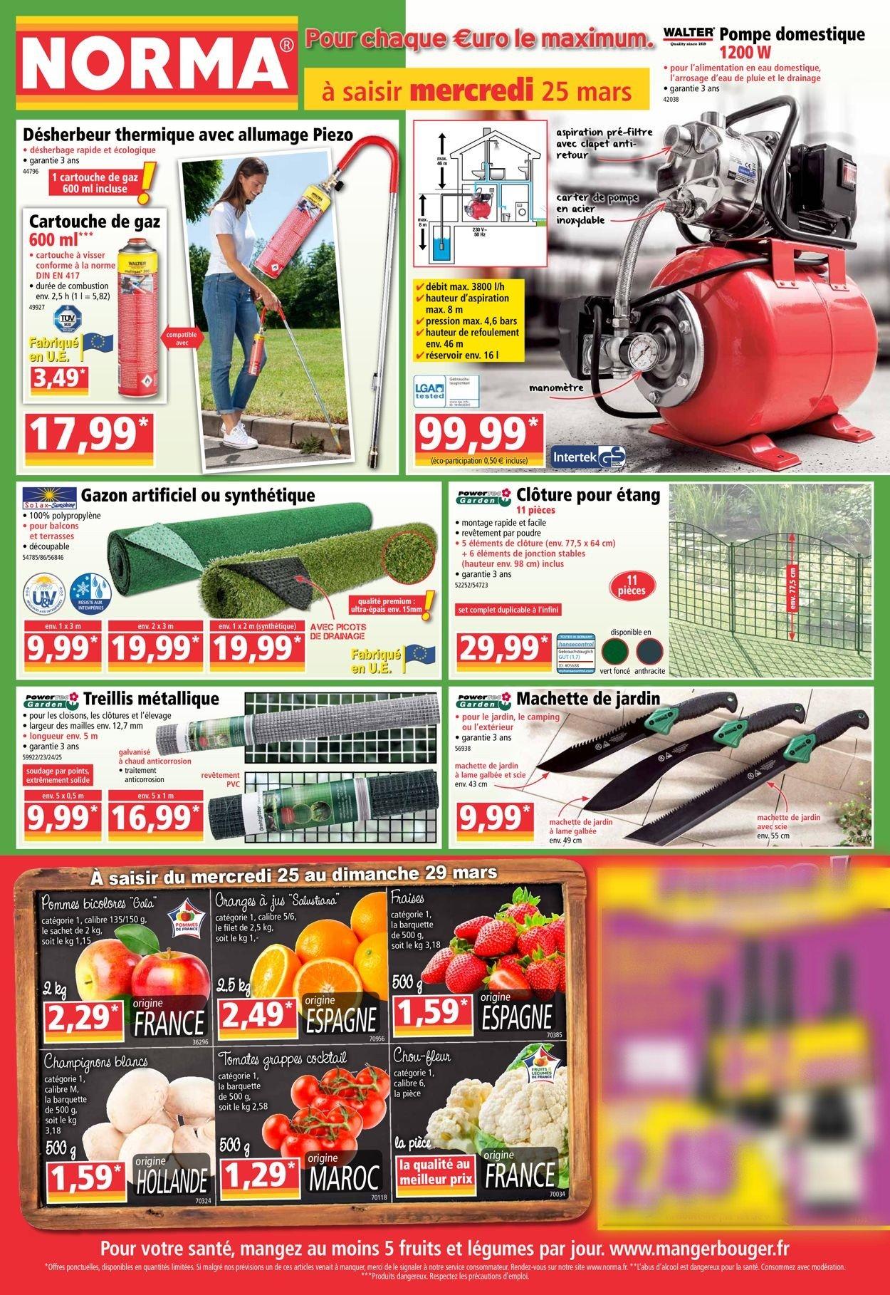Norma Catalogue - 25.03-31.03.2020