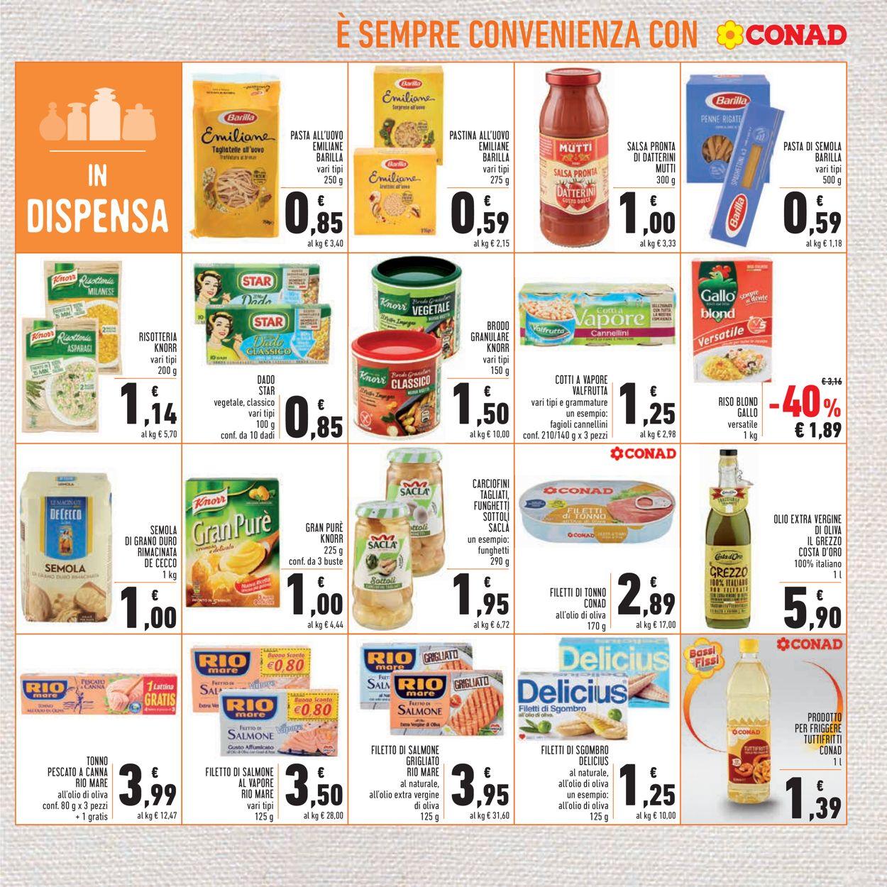 Volantino Conad - Offerte 27/01-07/02/2021 (Pagina 17)