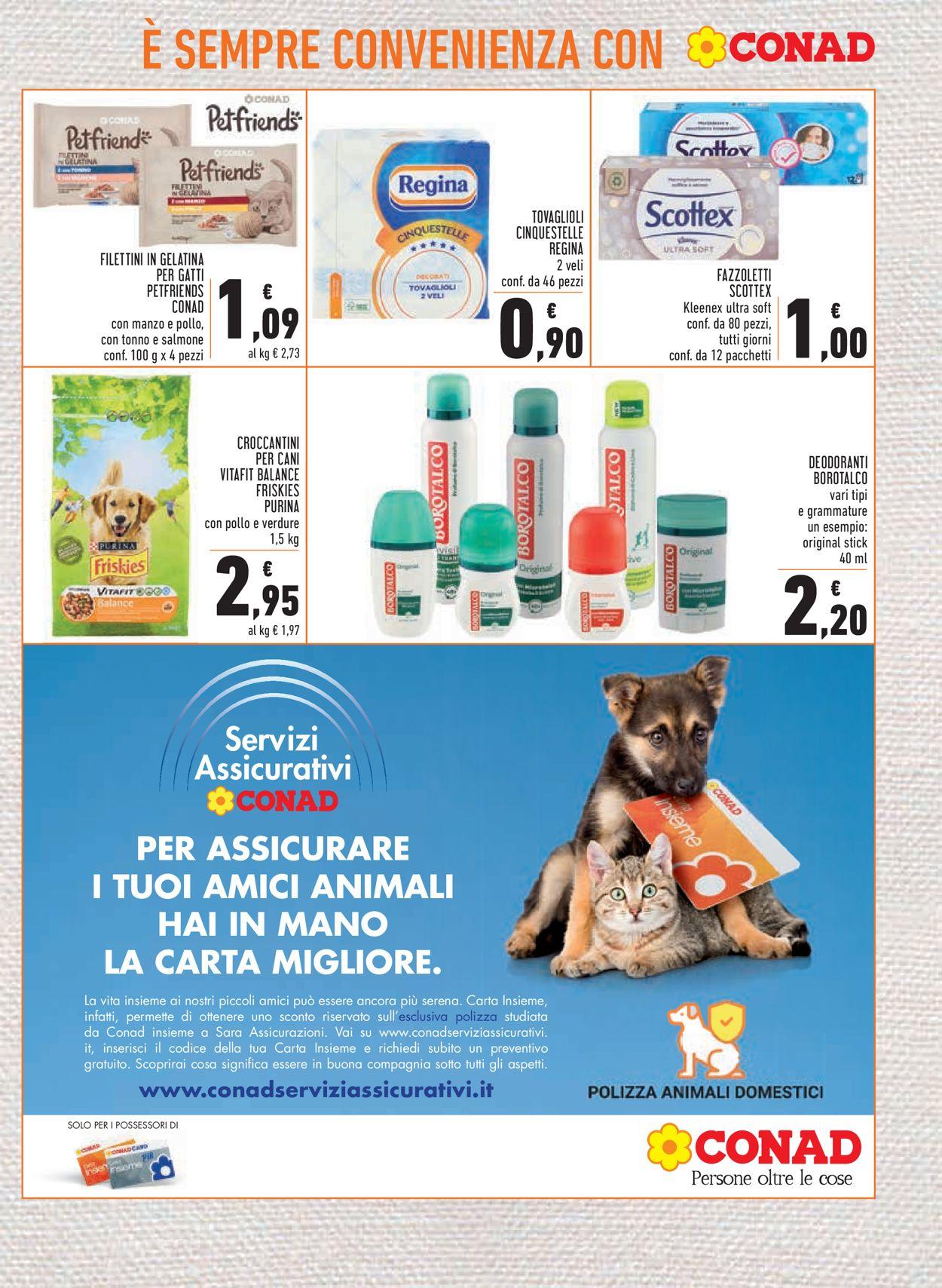 Volantino Conad - Offerte 06/05-15/05/2021 (Pagina 17)