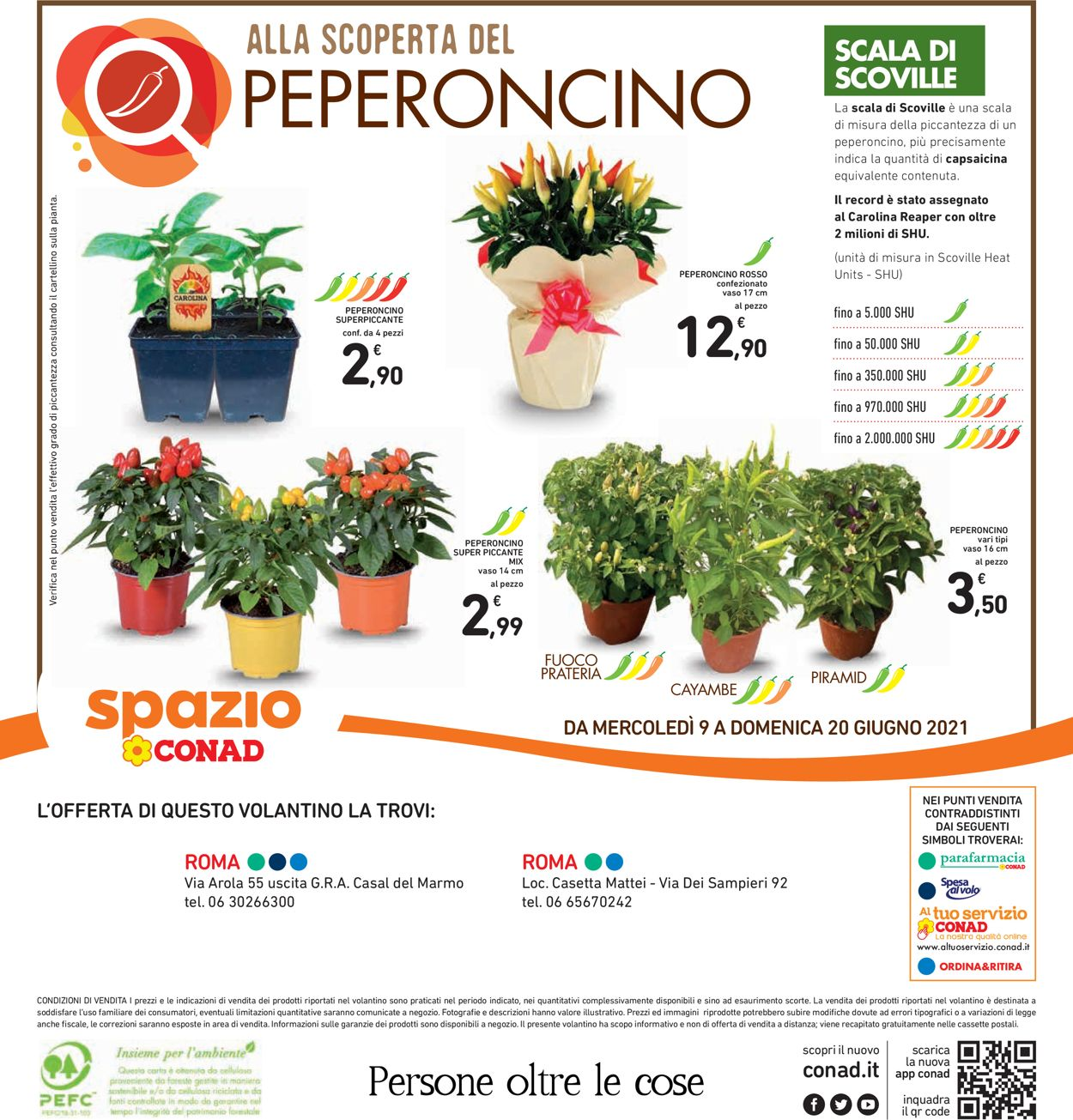 Volantino Conad - Offerte 09/06-20/06/2021 (Pagina 40)