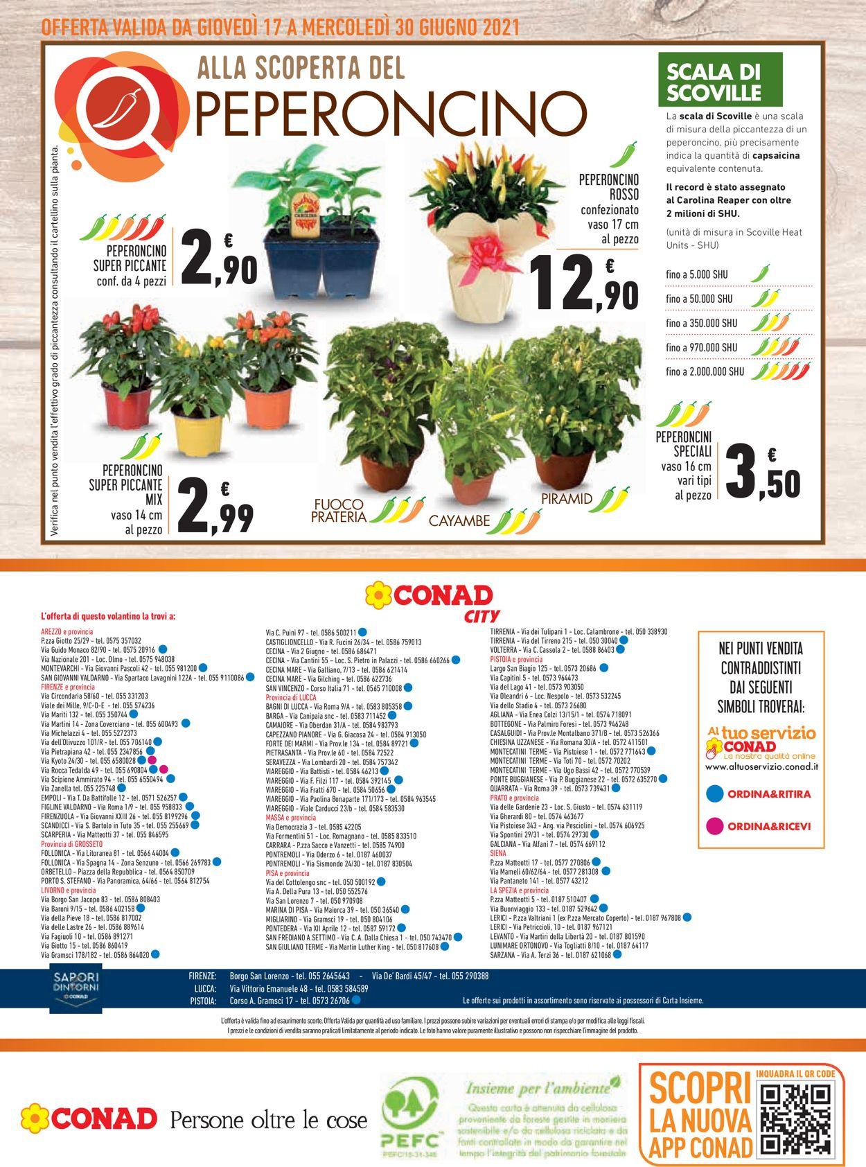 Volantino Conad - Offerte 17/06-30/06/2021 (Pagina 20)