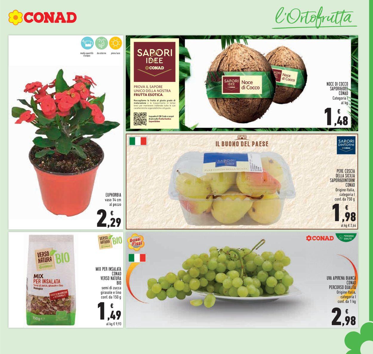 Volantino Conad - Offerte 28/07-08/08/2021 (Pagina 11)