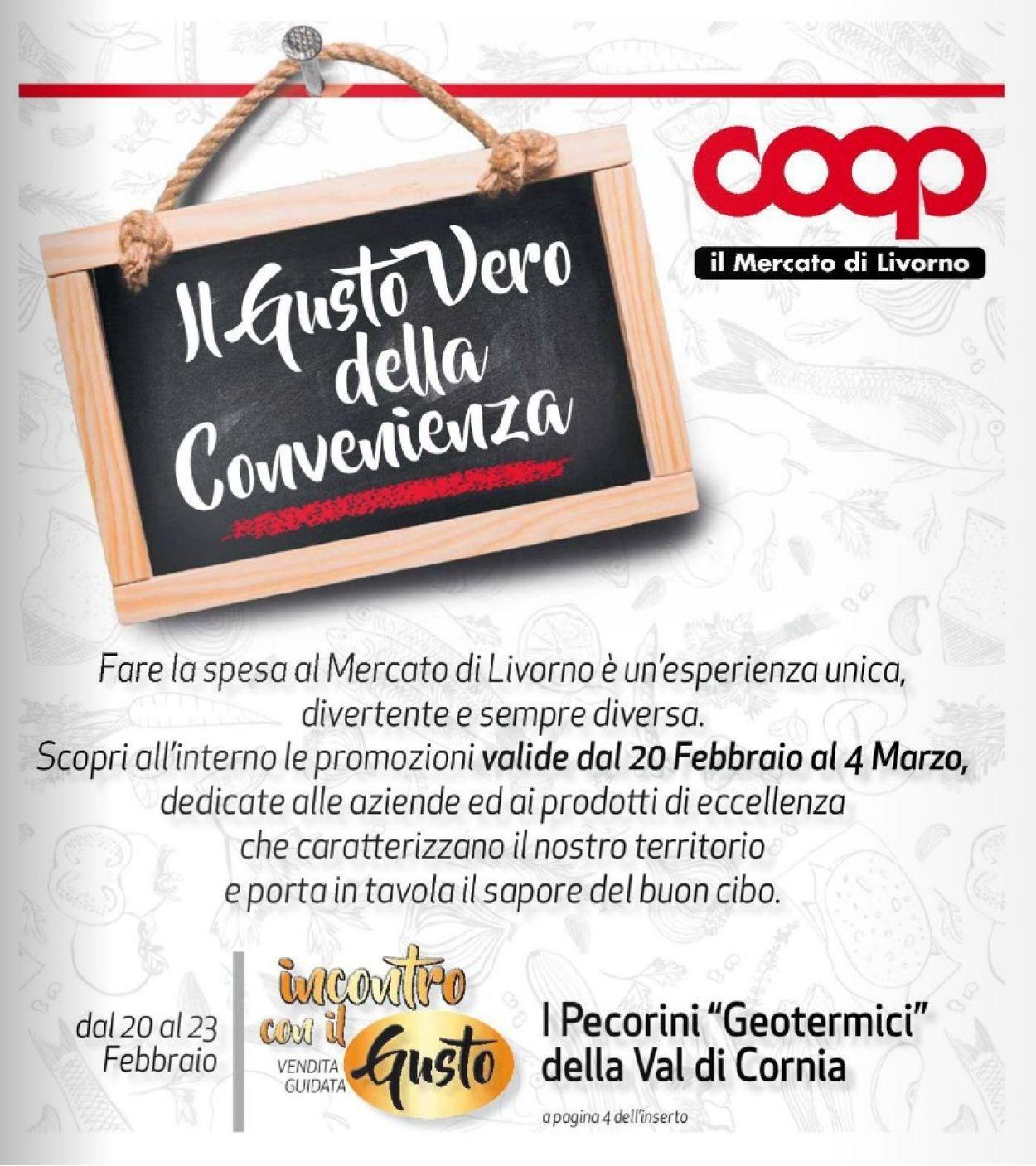 Volantino Coop - Offerte 20/02-04/03/2020 (Pagina 17)