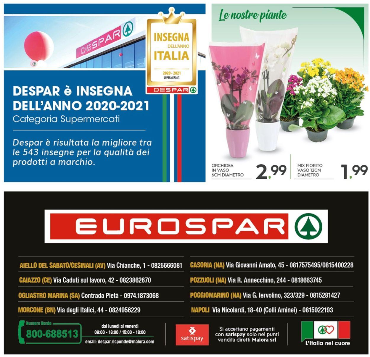 Volantino Eurospar - Offerte 28/01-07/02/2021 (Pagina 24)