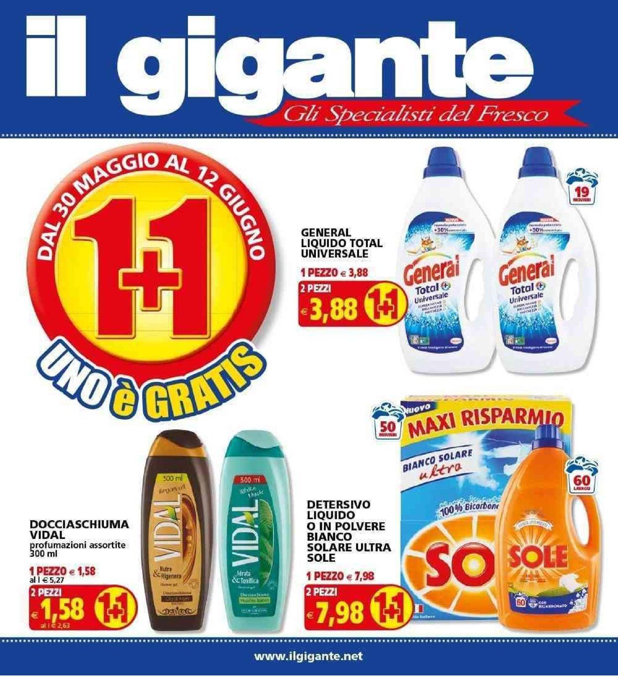 Volantino Il Gigante - Offerte 30/05-12/06/2019