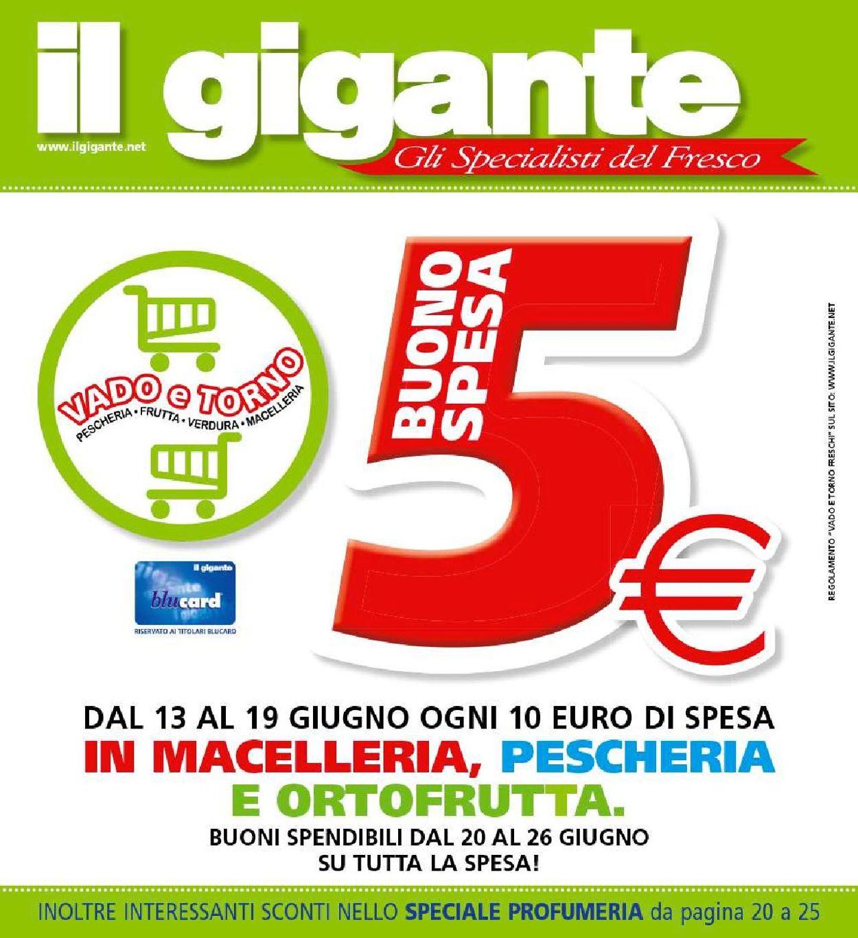 Volantino Il Gigante - Offerte 13/06-26/06/2019