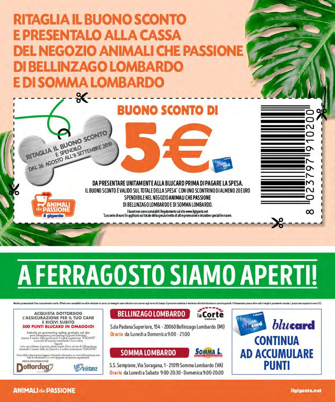 Volantino Il Gigante - Offerte 05/08-25/08/2019 (Pagina 8)