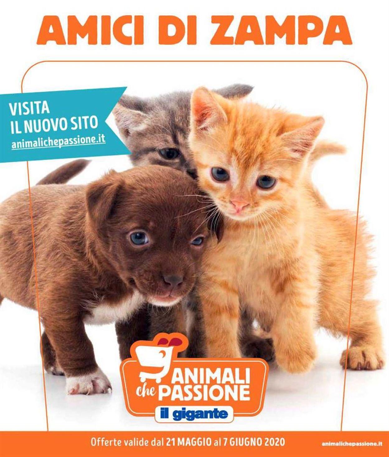 Volantino Il Gigante - Offerte 21/05-07/06/2020