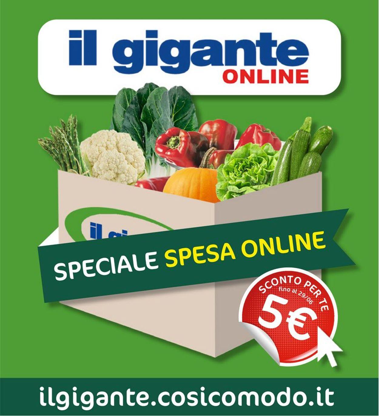 Volantino Il Gigante - Offerte 09/06-29/06/2020