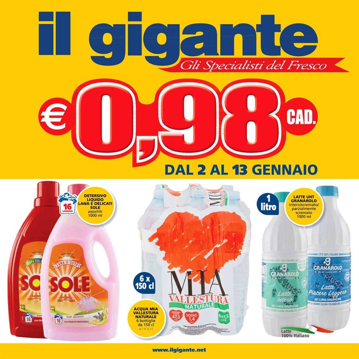 Volantino Il Gigante - Offerte 02/01-13/01/2021