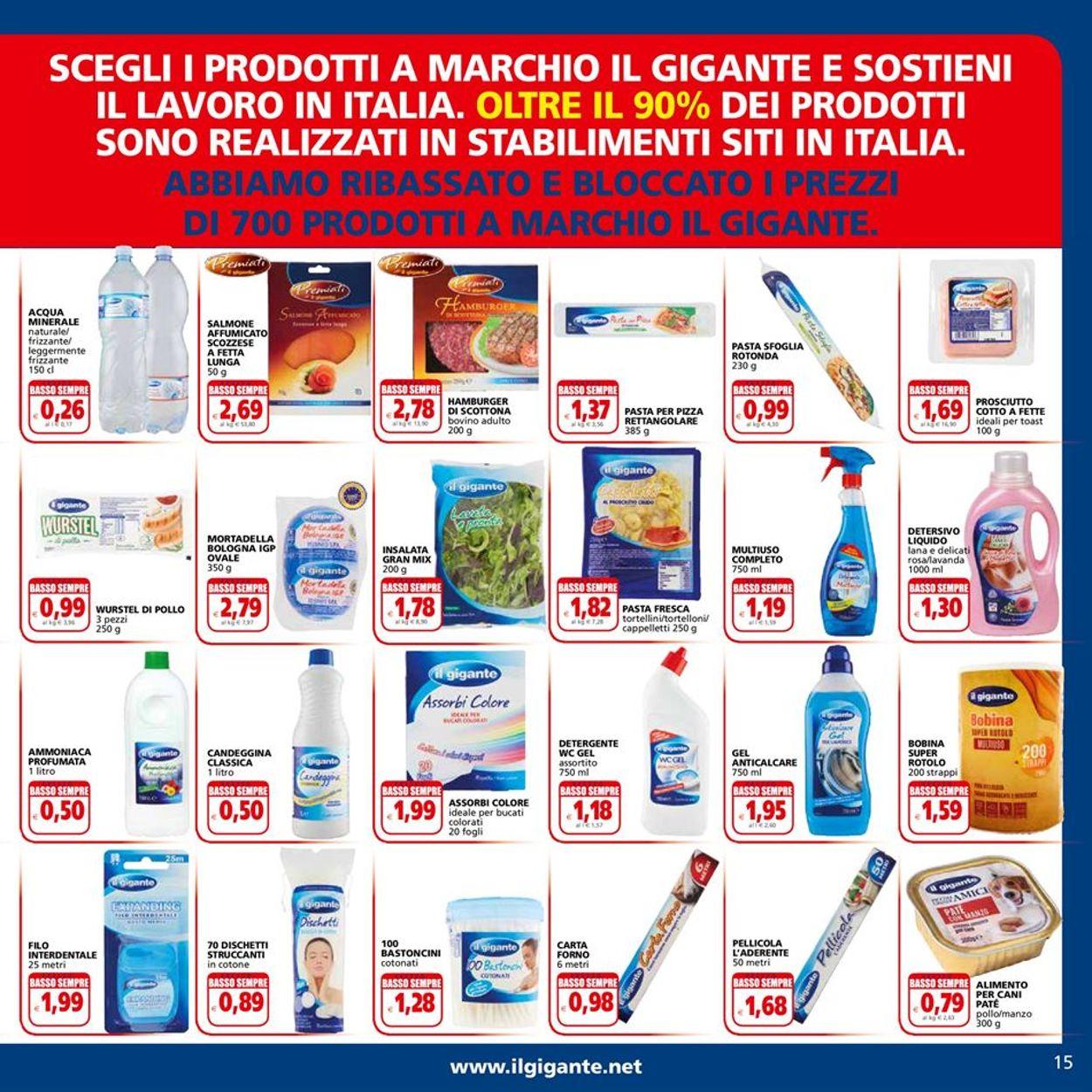 Volantino Il Gigante - Offerte 18/03-28/03/2021 (Pagina 15)
