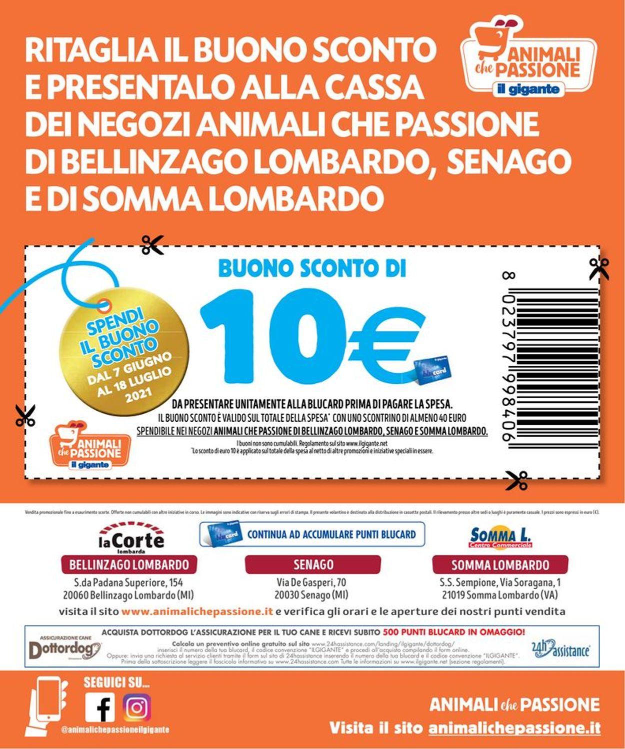 Volantino Il Gigante - Offerte 07/06-18/06/2021 (Pagina 8)