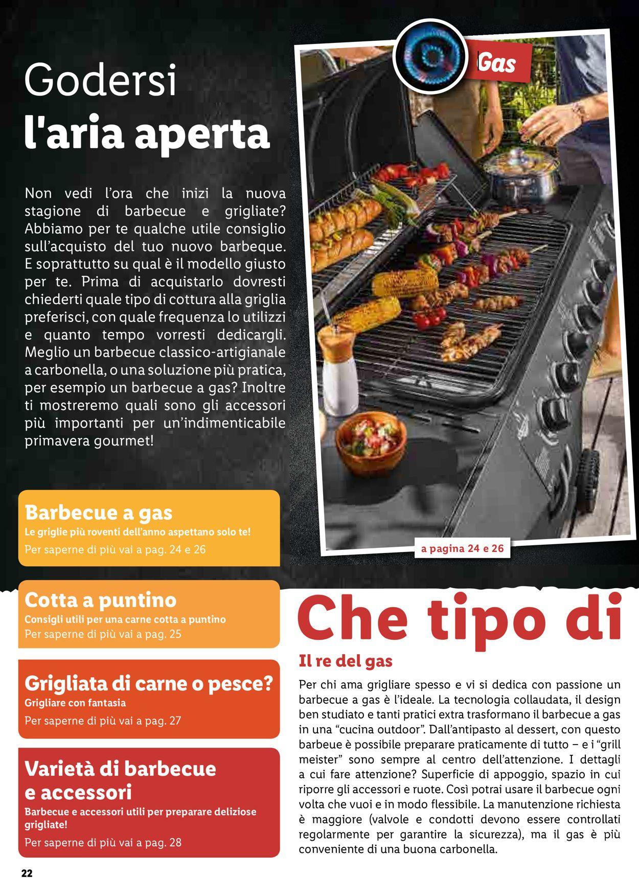 Volantino Lidl - Offerte 08/04-20/06/2021 (Pagina 22)