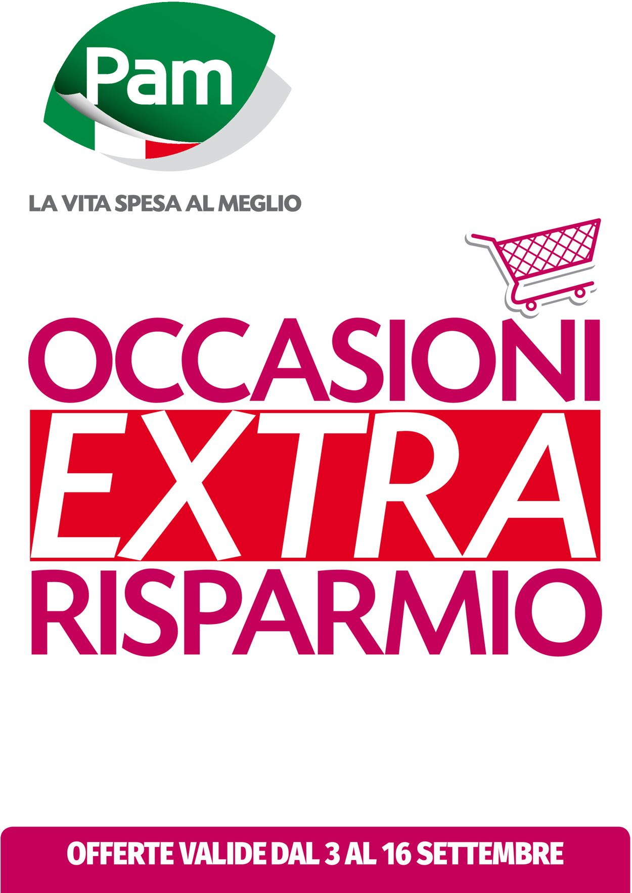 Volantino Pam Panorama - Offerte 03/09-16/09/2020