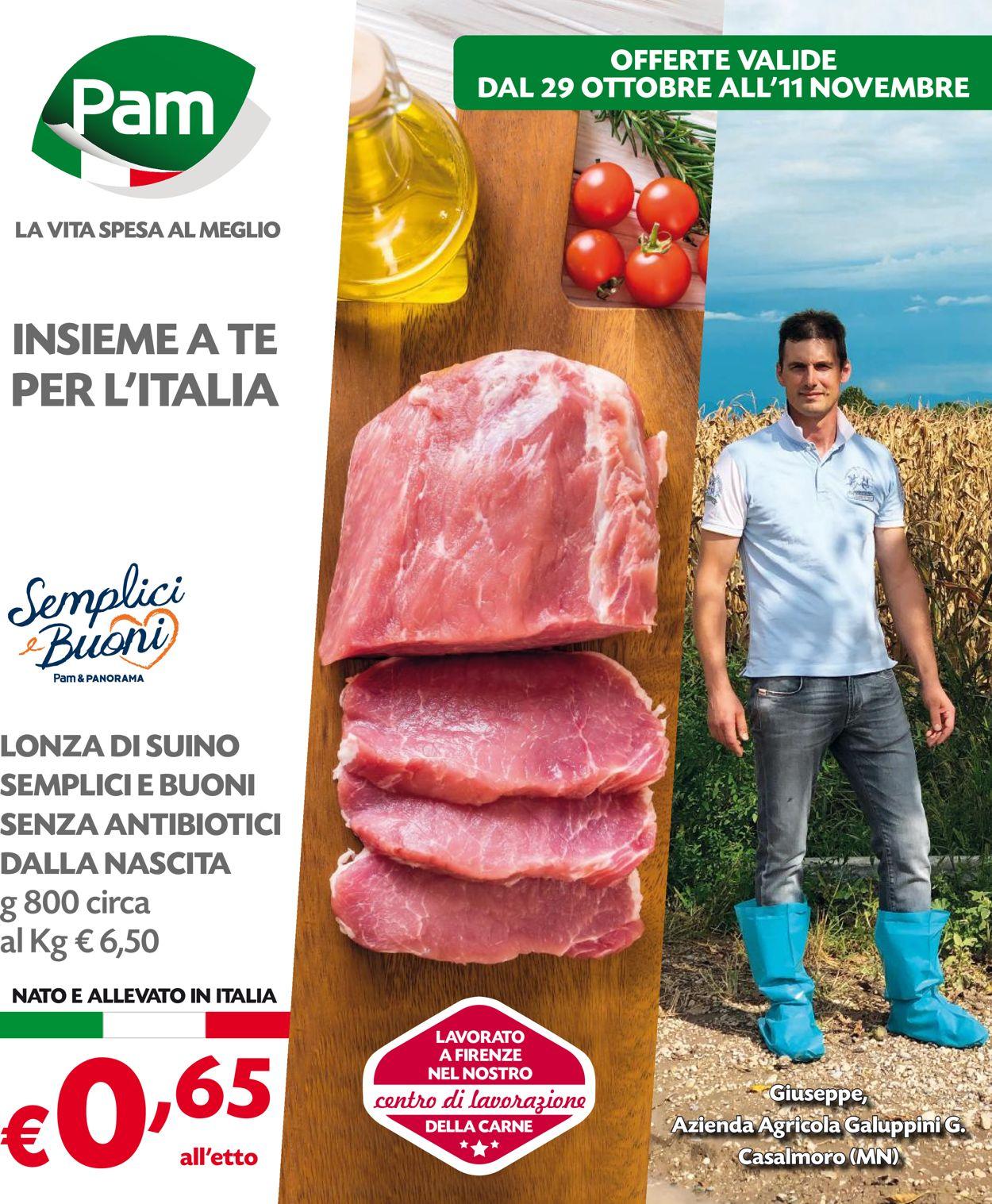 Volantino Pam Panorama - Offerte 29/10-11/11/2020