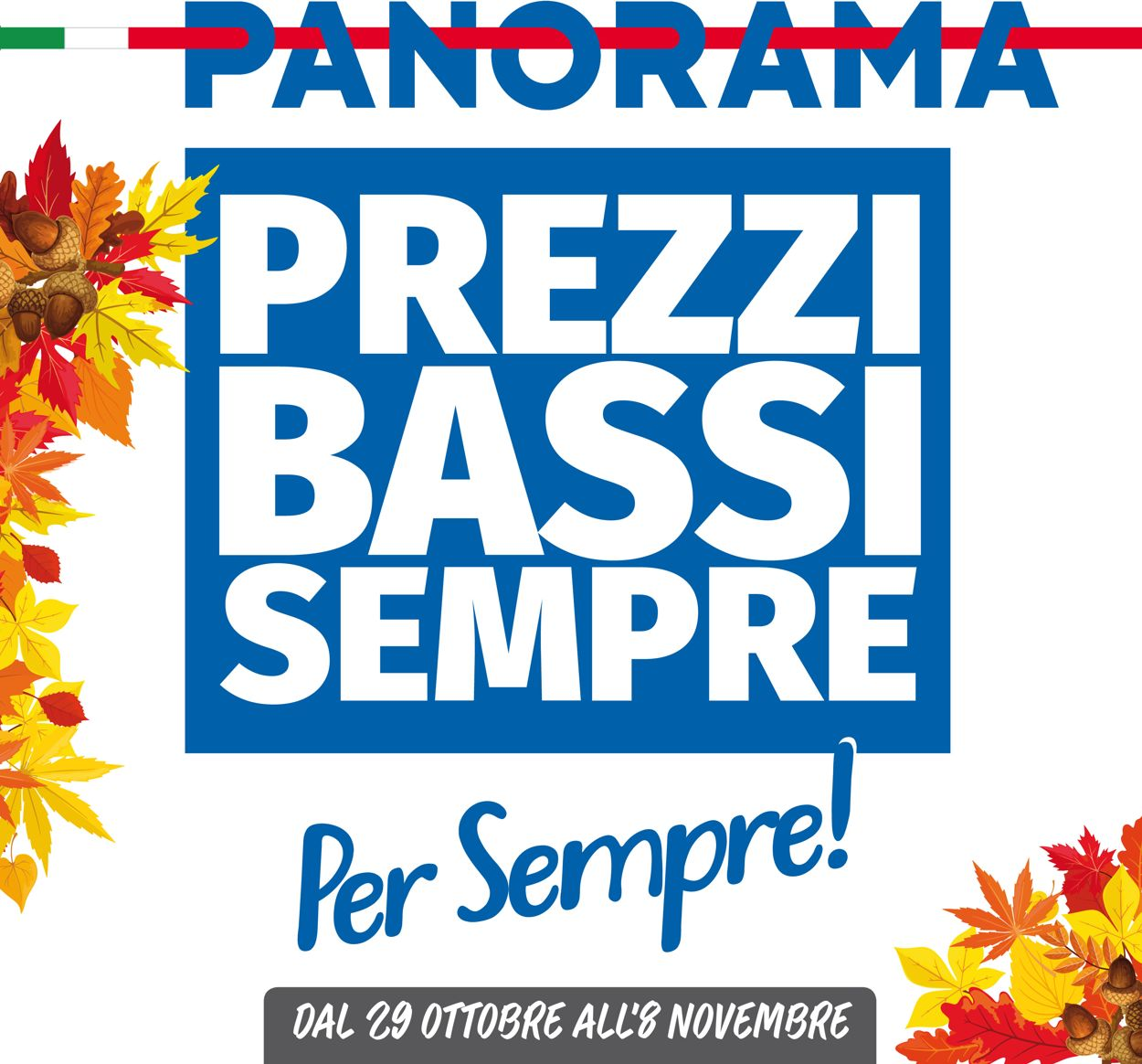 Volantino Pam Panorama - Offerte 29/10-08/11/2020