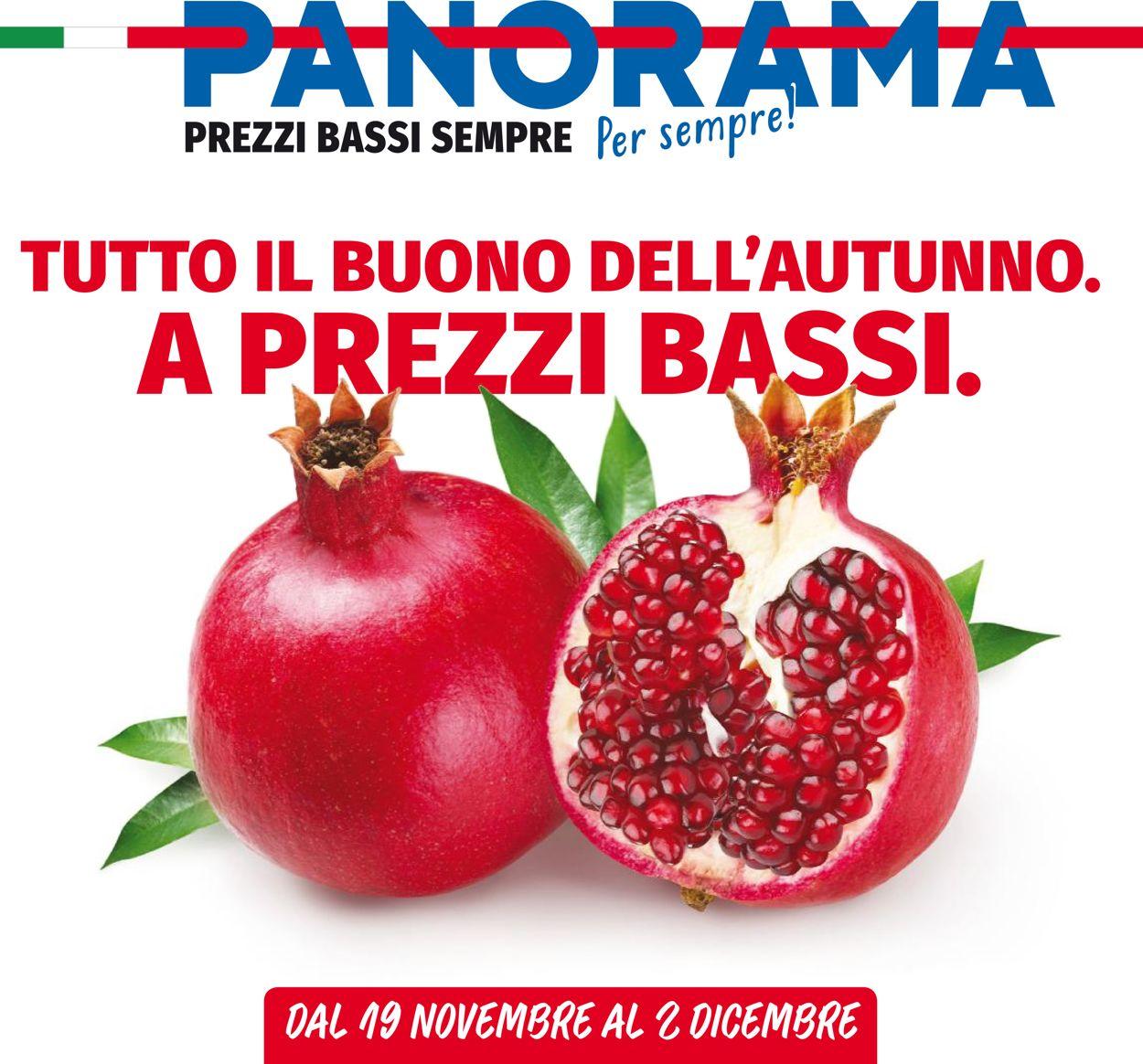 Volantino Pam Panorama - Offerte 19/11-02/12/2020