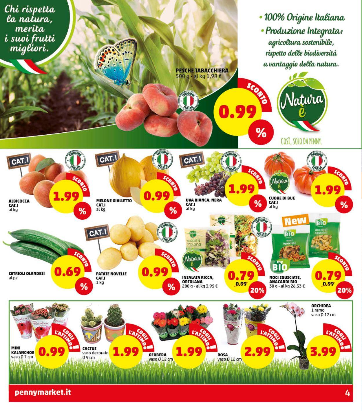 Volantino Penny Market - Offerte 16/07-22/07/2020 (Pagina 4)