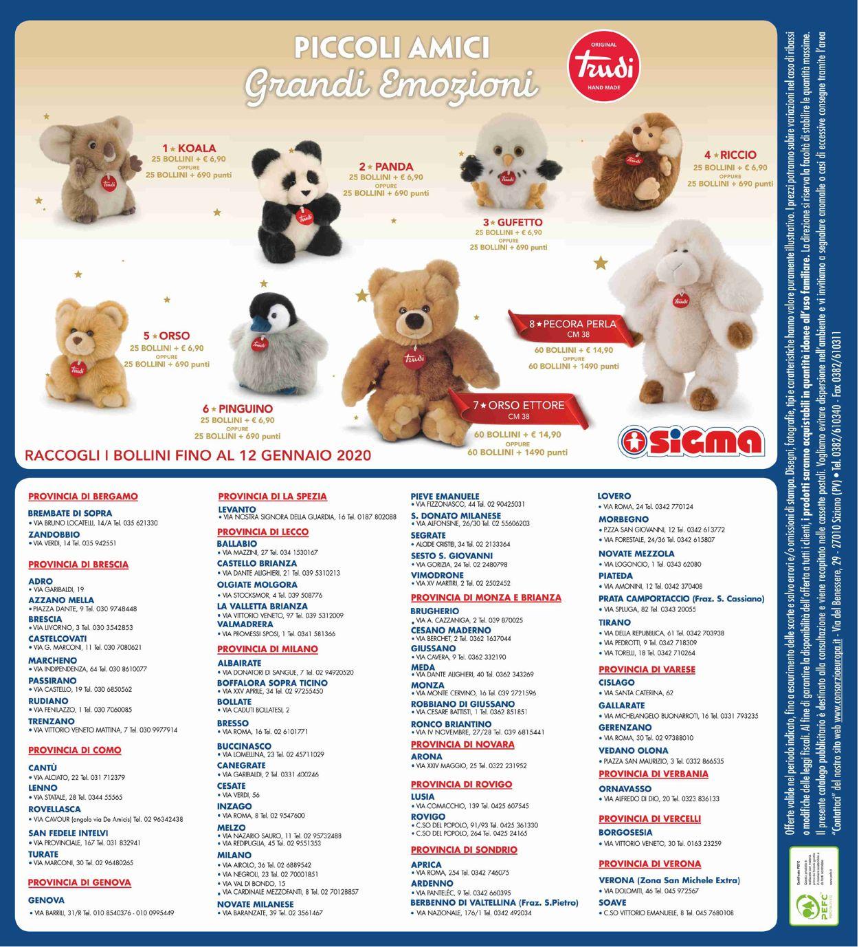 Volantino Il volantino natalizio di Sigma - Offerte 19/12-01/01/2020 (Pagina 24)