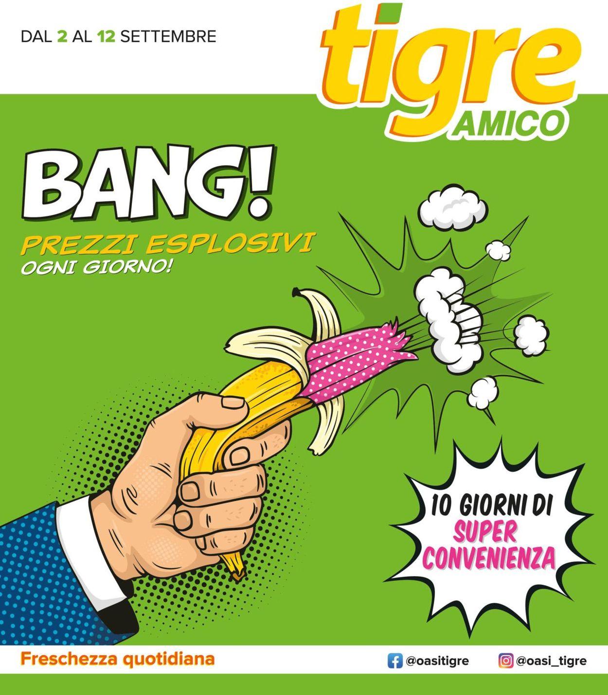 Volantino Tigre - Offerte 02/09-12/09/2020