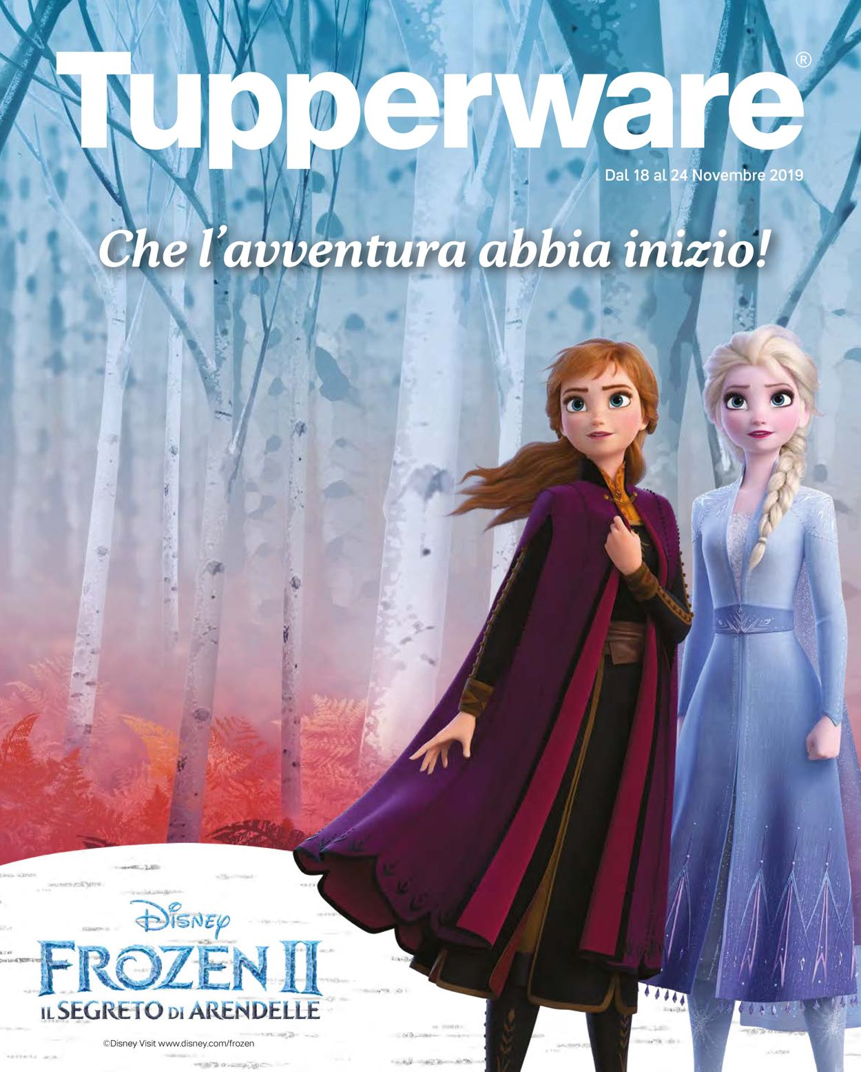 Volantino Tupperware - Offerte 18/11-24/11/2019