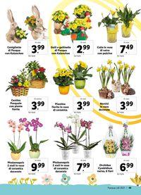 Lidl - Brochure Pasqua 2021