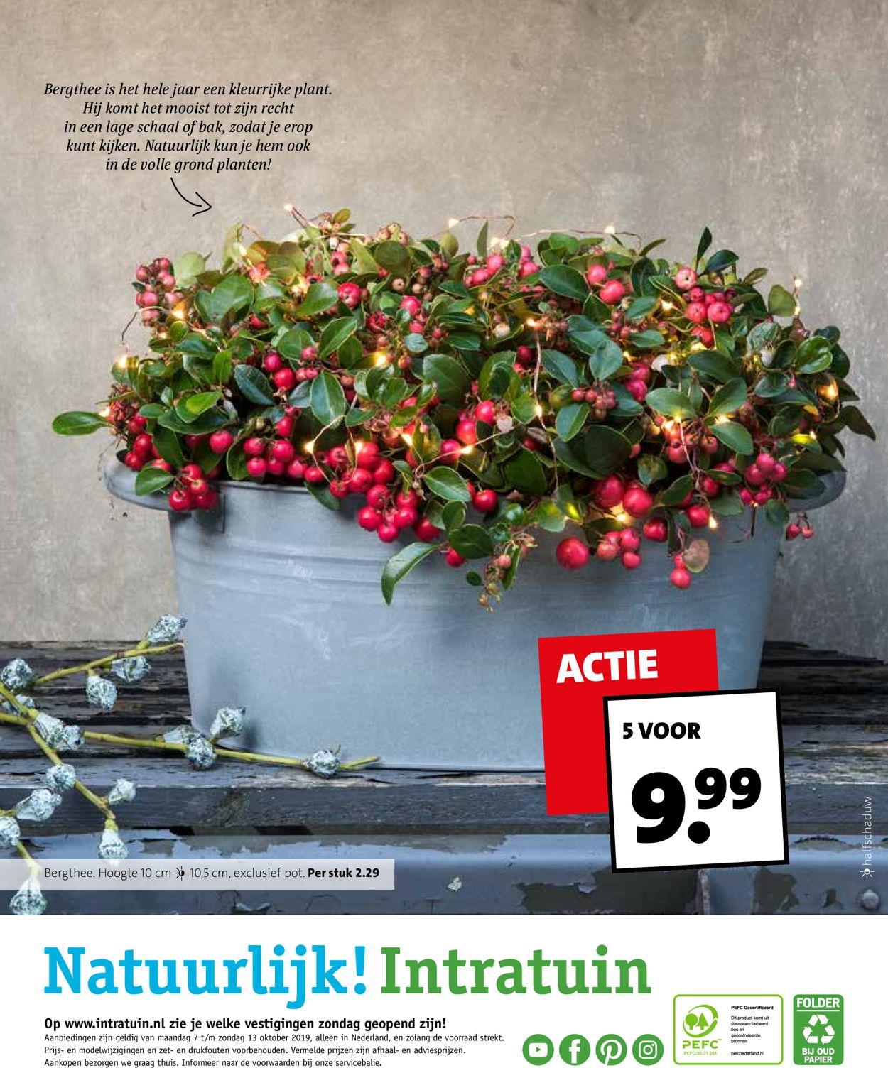 Intratuin Folder - 07.10-13.10.2019 (Pagina 20)