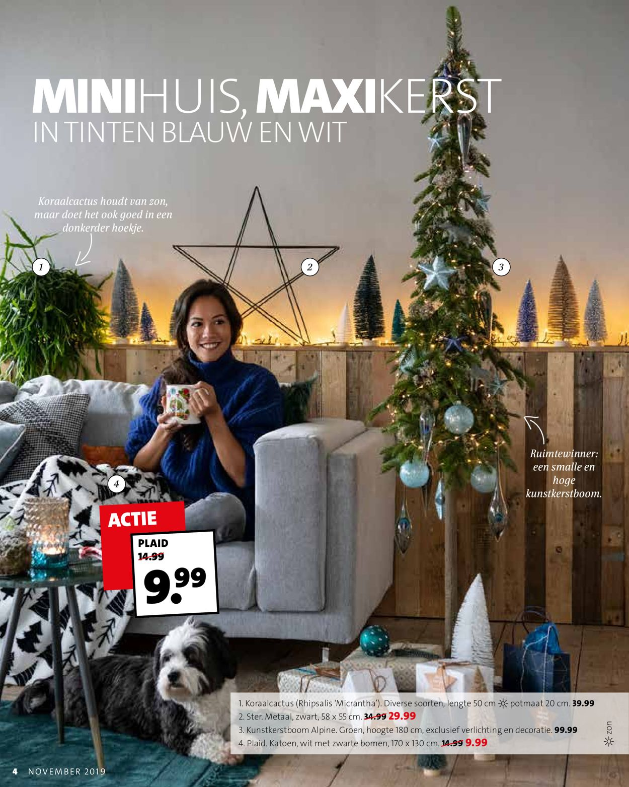 Intratuin kerstaanbieding 2019 Folder - 25.11-01.12.2019 (Pagina 4)