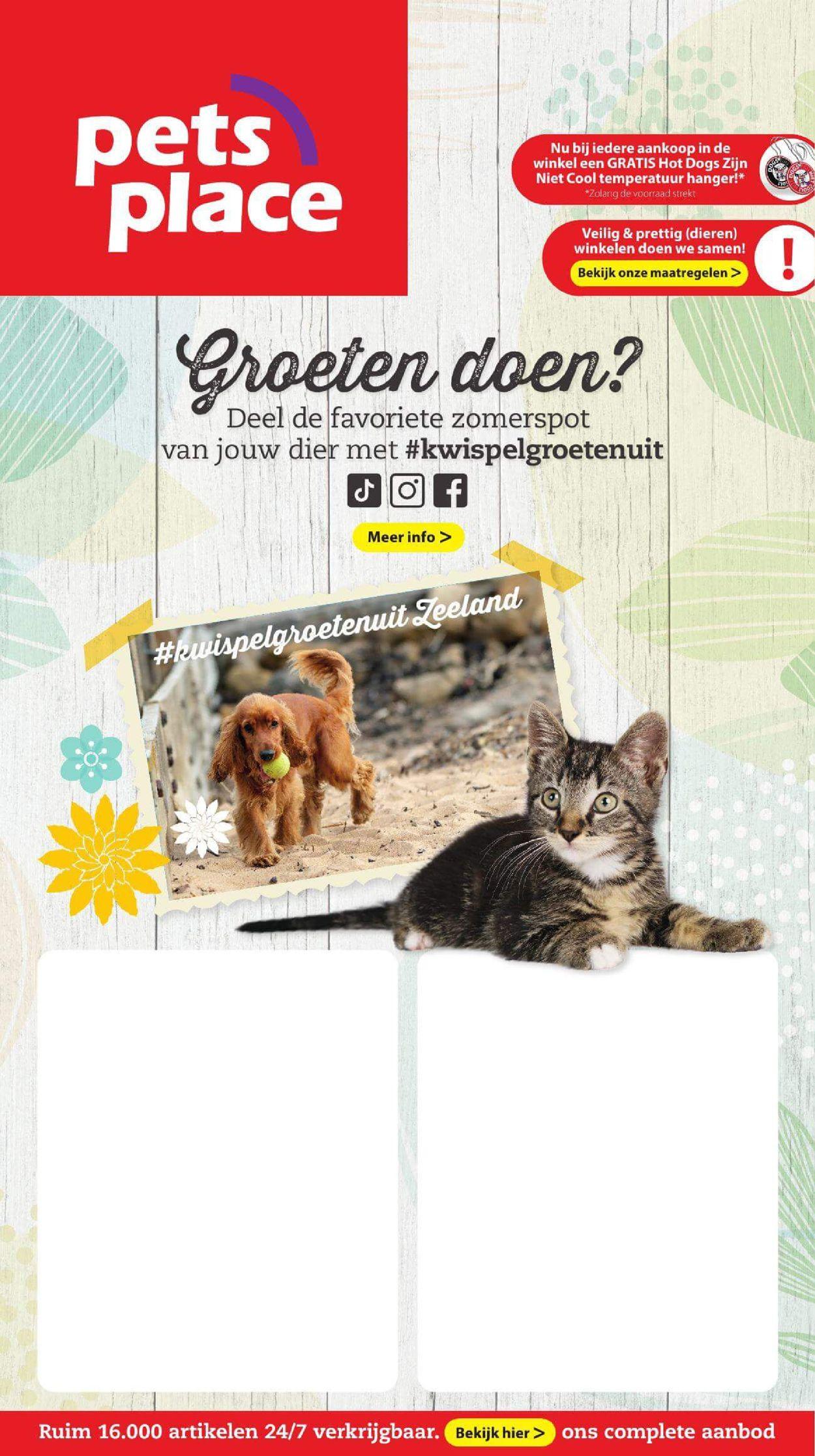 Pets Place Folder - 26.07-01.08.2021