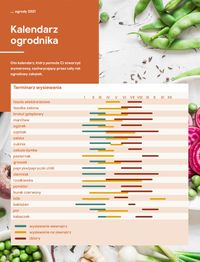 Castorama Katalog Ogrody 2021